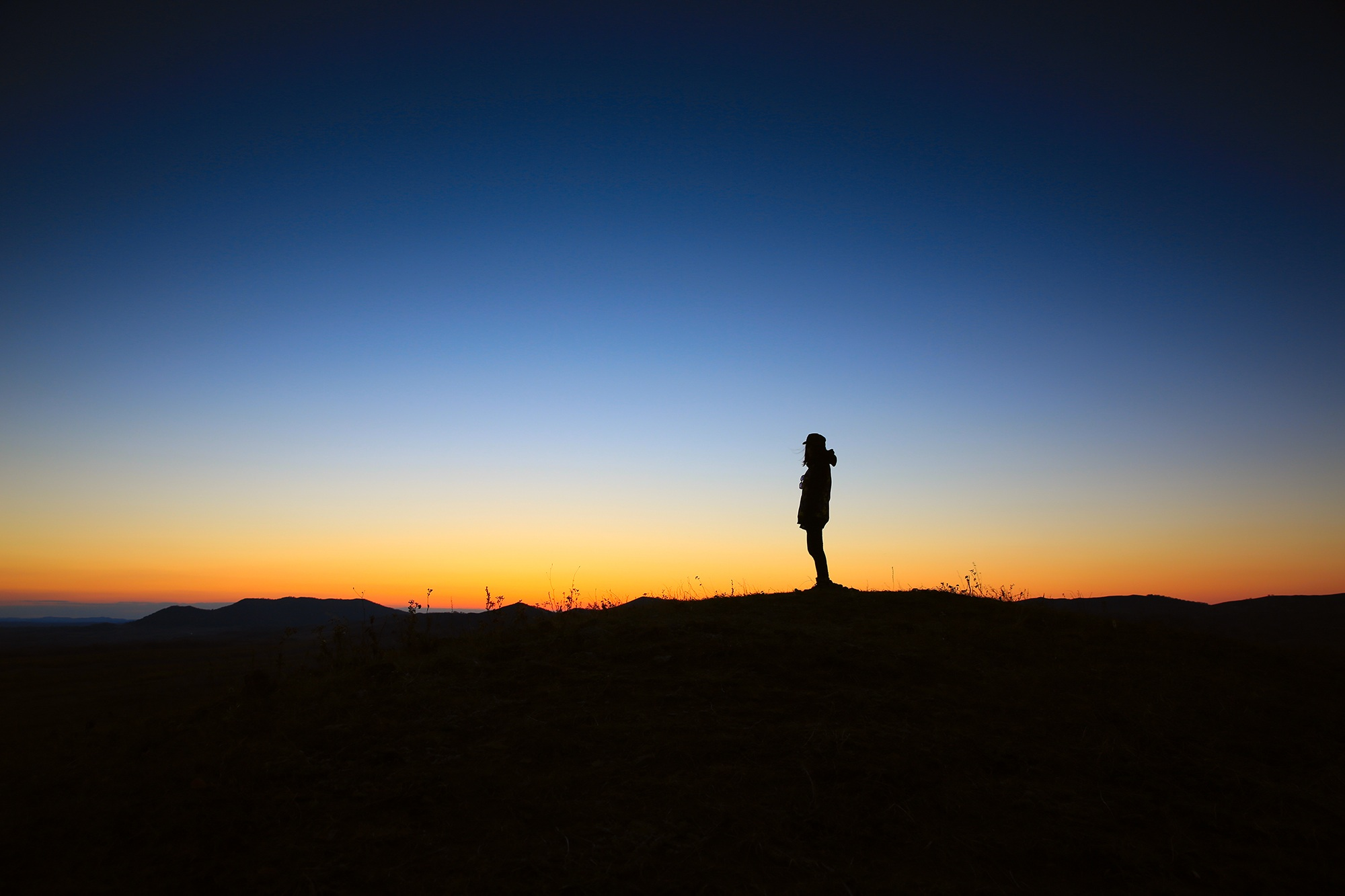 Exploring Jesus: a 21-day journey